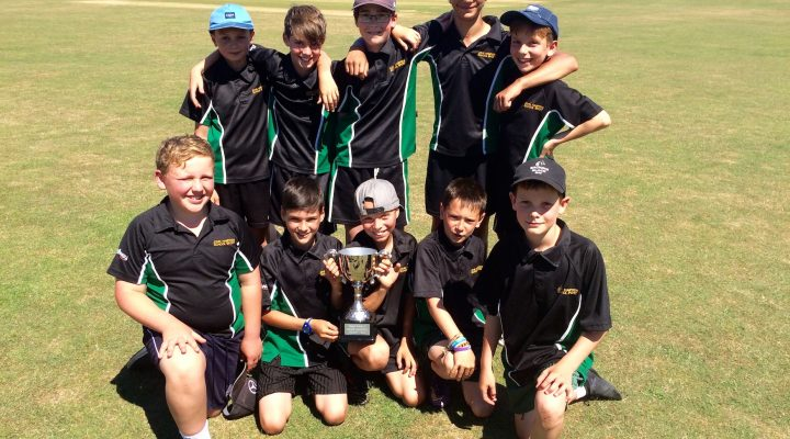 Thame Partnership Cricket Champions!