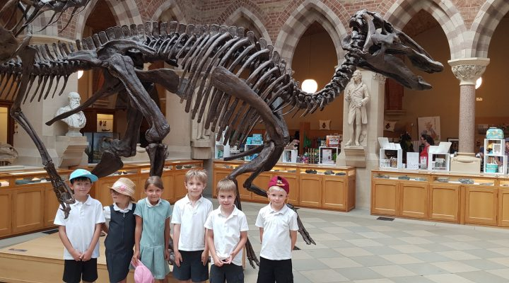 Year 2 Oxford Natural History Museum Trip